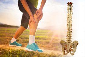 Colonne vertébrale et blessures musculo-tendineuses, quel lien - etiopathie - osteopathie - osteopathe - Cecile Faure - Etiopathe - aix en provence - les milles